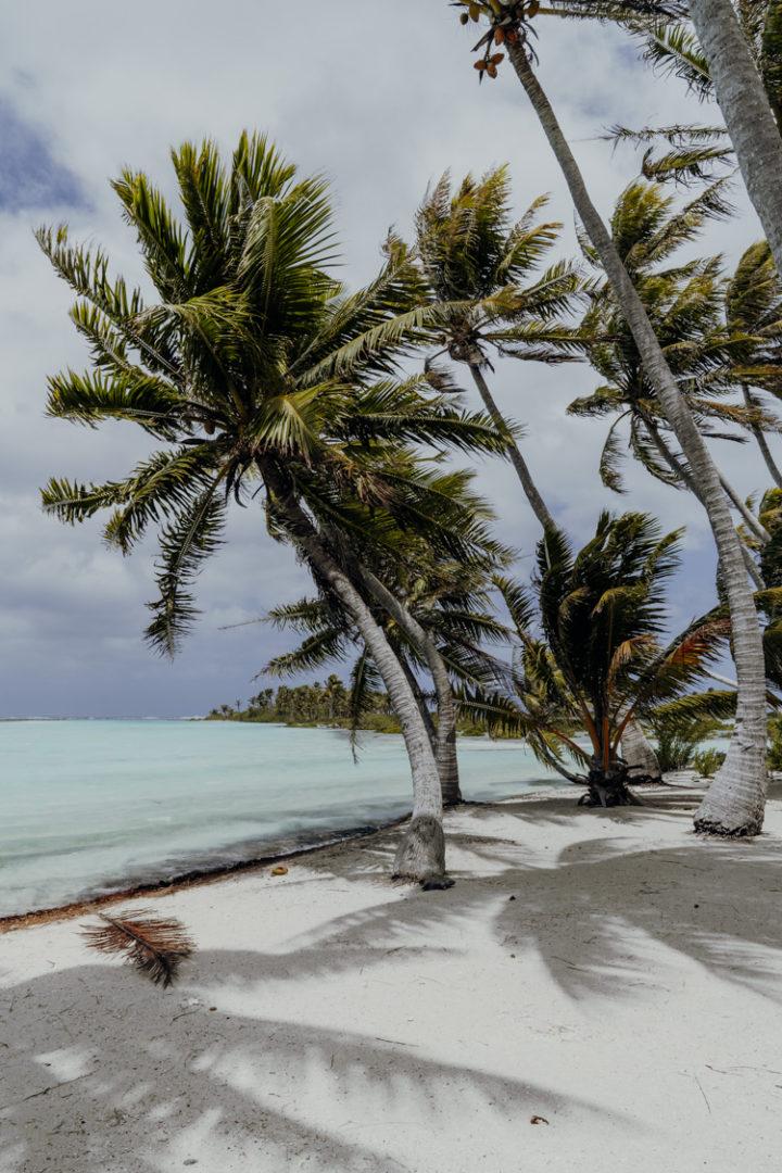 Urlaub auf Tikehau - Tuamotu Inseln - Französisch Polynesien