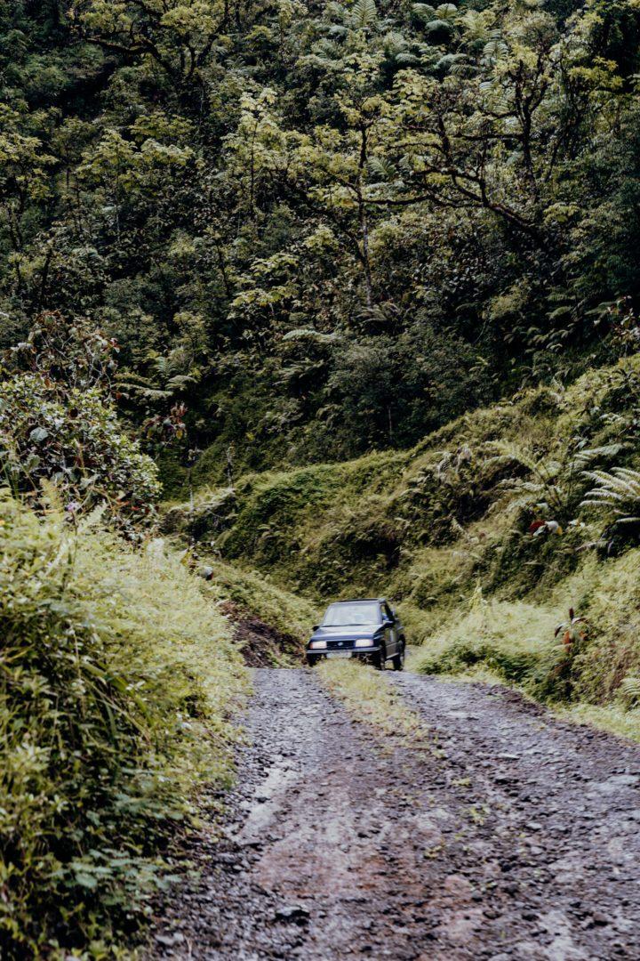 Tahiti Safari – Jeeptour durch Inselinnere