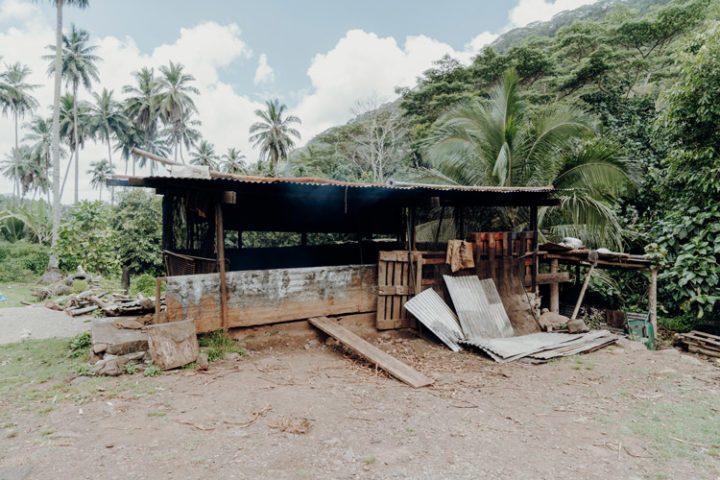 Kopraplantage Tal von Taipivai Marquesas