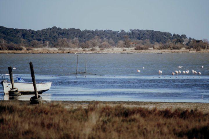 Bages – Besuche das charmante Fischerdorf Bages, ein Mekka für Windsurfer und Foodies im Languedoc-Roussillon