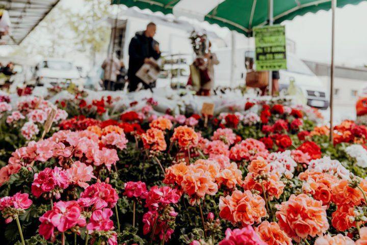 Der Markt am Quai du Roi
