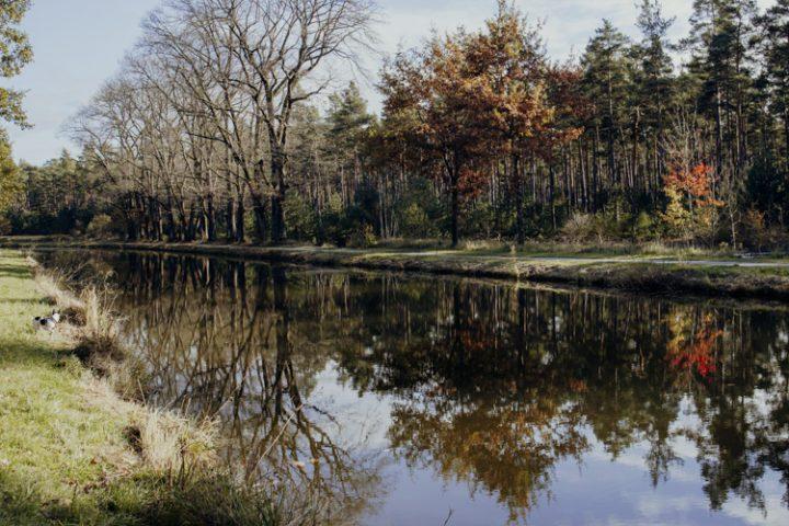 Wanderwege im Nürnberger Land – Tipp 1: Wandern vom Brückkanal zur Schwarzachklamm