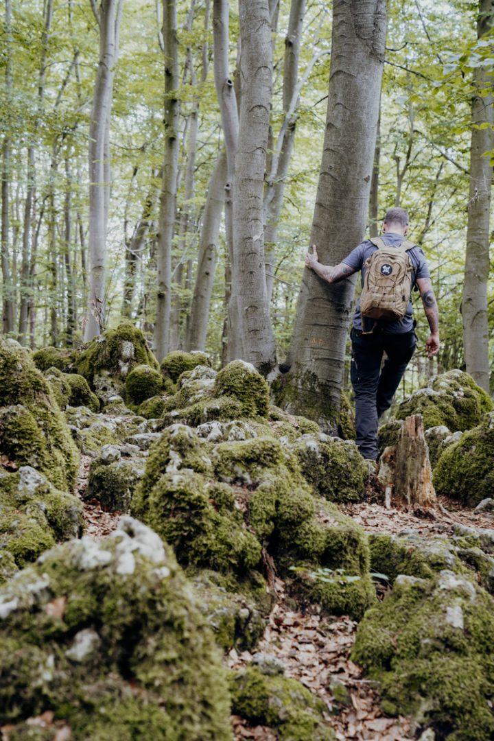 Wanderwege im Nürnberger Land – Tipp 2: Wandern auf dem Eibgrat