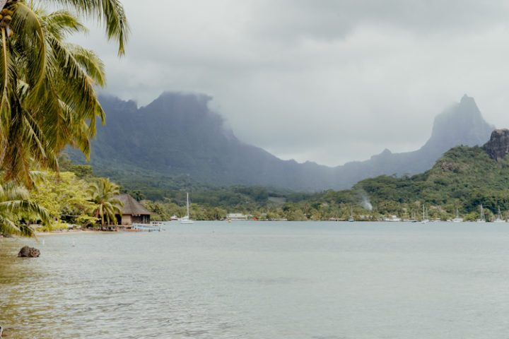 Cook's Bay Moorea Französisch Polynesien
