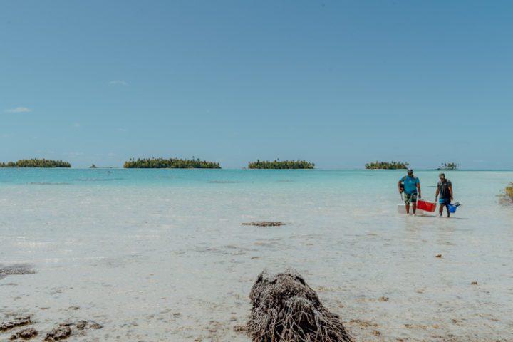 Ein Ausflug in die blaue Lagune Rangiroa