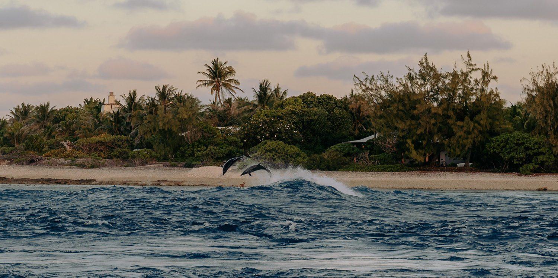 Urlaub auf Rangiroa – zu Gast auf dem zweitgrößten Atoll der Welt