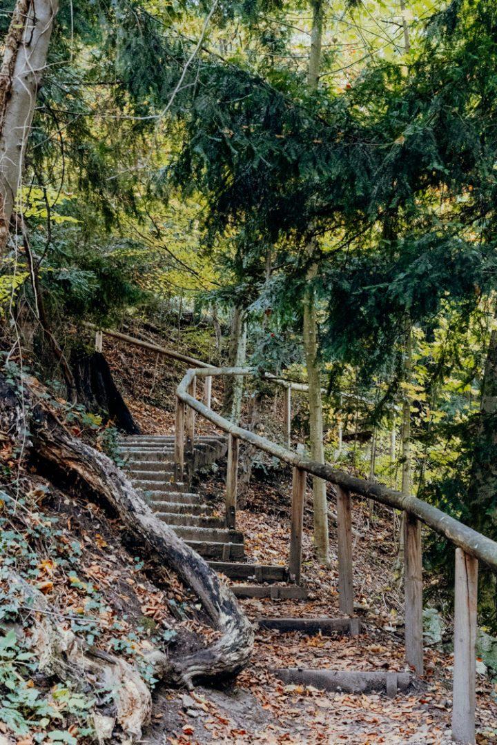 Geniesse den Ausblick vom Bürglstein