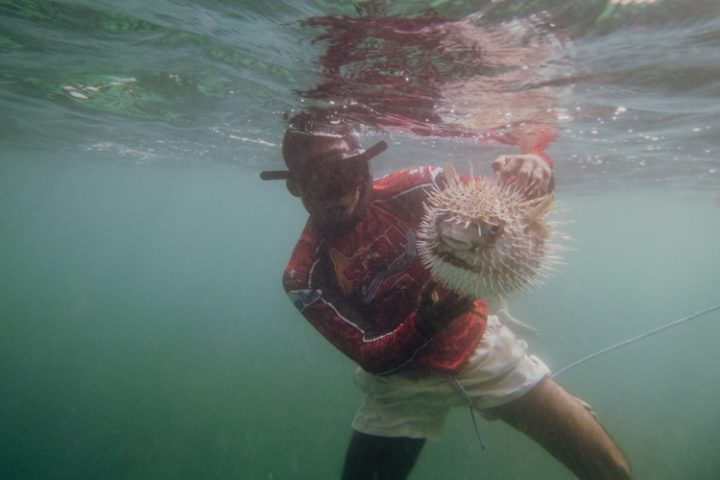 Schnorcheln auf der Isla Grande – Islas del Rosario – Kolumbien