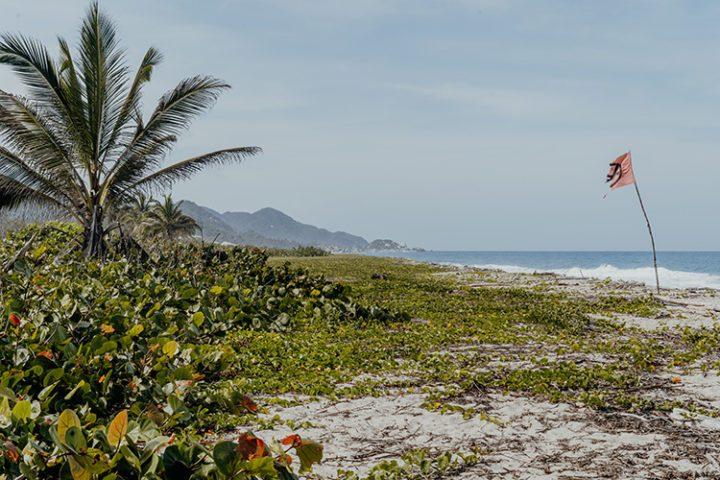 Tipps für die schönsten Reiseziele in Kolumbien: Tayrona Nationalpark – Natur pur
