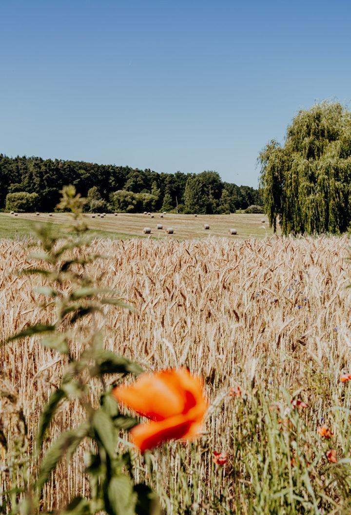 Der Erlebnisradweg Hohenzollern