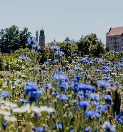 Erlebnisradweg Hohenzollern – auf den Spuren der Hohenzollern in Franken