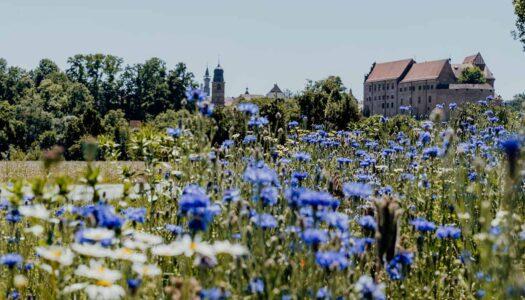 Erlebnisradweg Hohenzollern – Radtour von Nürnberg nach Ansbach