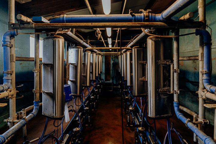 Milchbauernhof von Cédric Pharisa in Epagny
