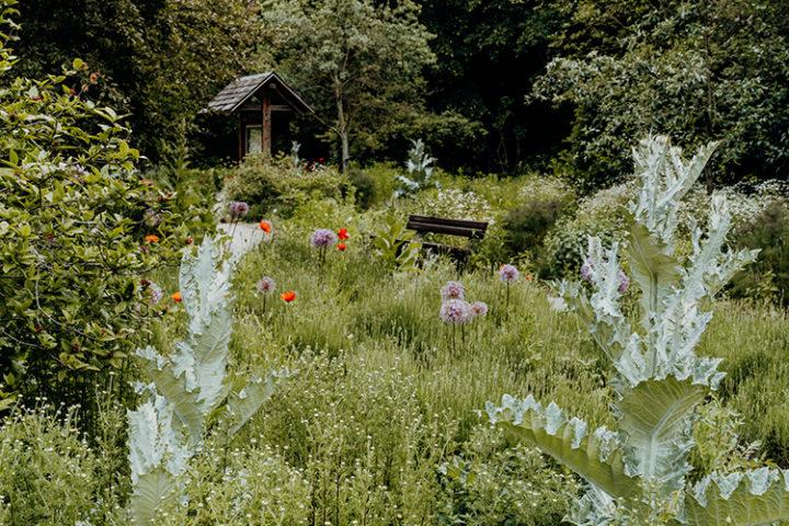 Der Aromagarten Erlangen