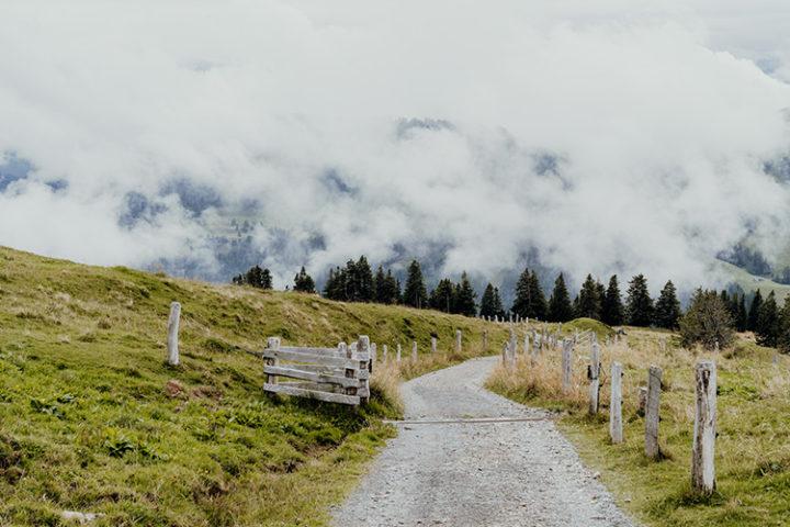 Wanderung von Rigi Kulm nach Rigi Kaltbad