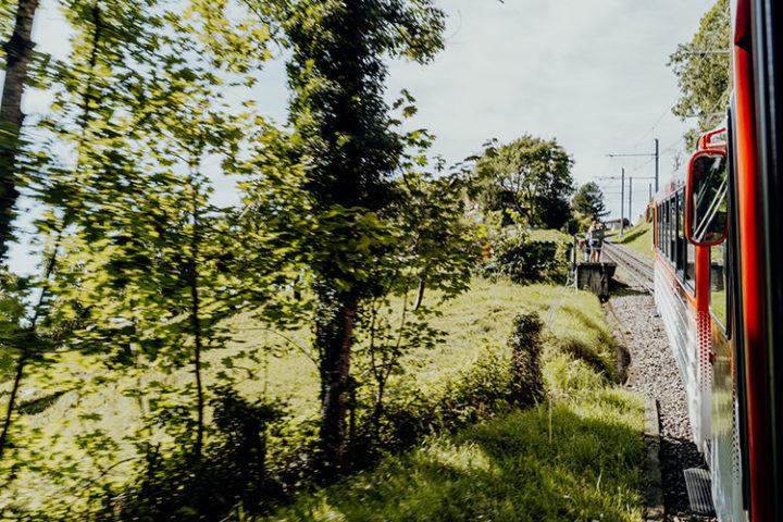 Anreise auf die Rigi mit der Zahnradbahn ab Vitznau