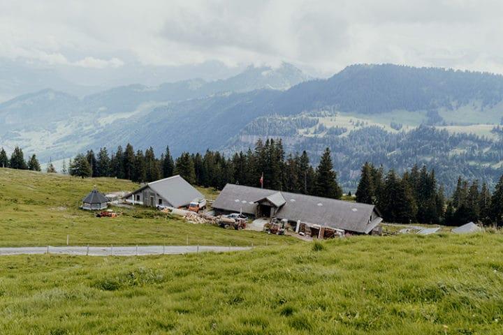 Alpwirtschaft Chäserenholz auf der Rigi