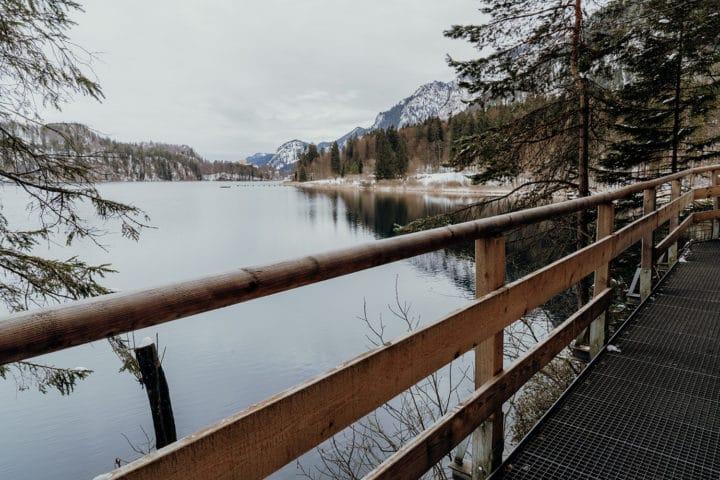 Über Holzstege geht es immer am Alpsee entlang