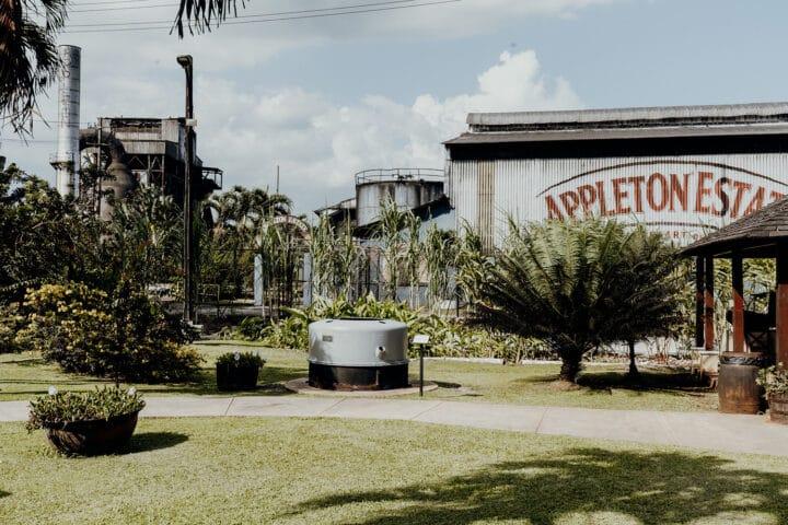 Appleton Estate in Jamaika