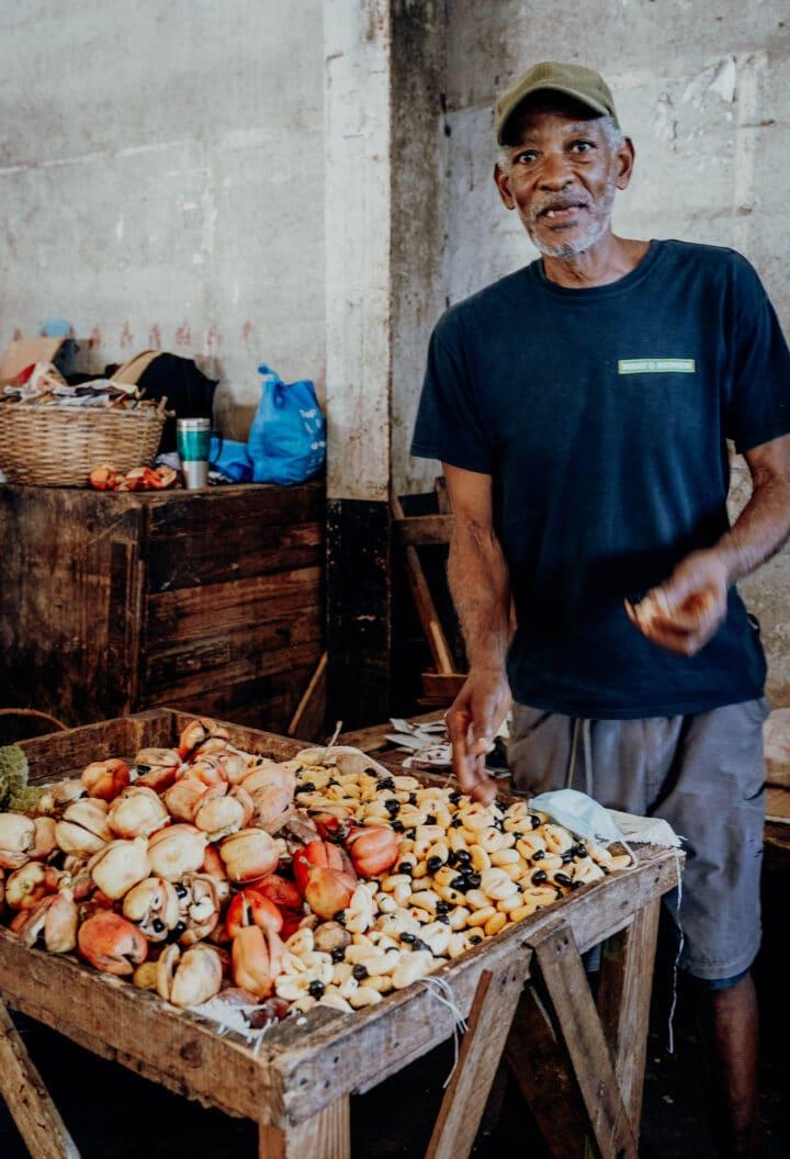 die jamaikanische Baumfrucht Ackee