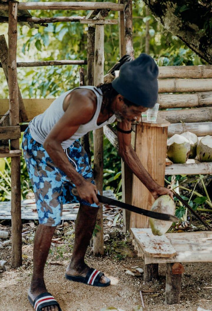 Kokosnuss-Verkäufer an den Mayfield Falls