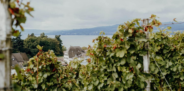 Herbstgenuss am Bodensee – Genießen mit allen Sinnen in der Vierländerregion