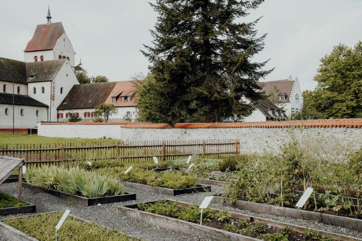 Gemüseinsel und UNESCO-Welterbe – Die Insel Reichenau